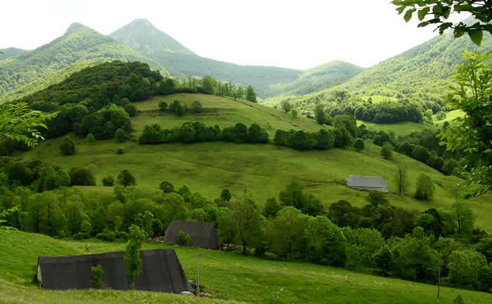 Vakantie in de Cantal
