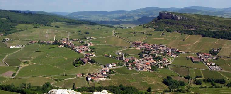 Wandelen in de wijngaarden vanPouilly-Fuissé