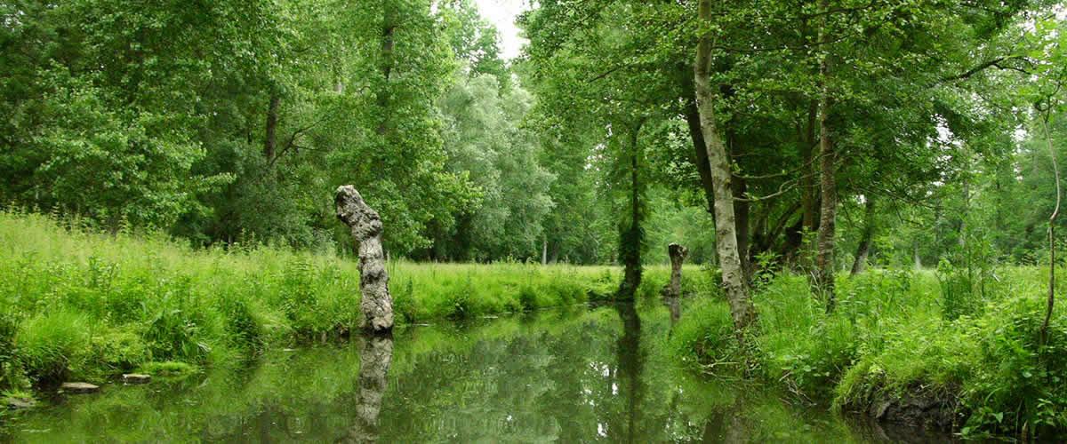 Natuur Frankrijk