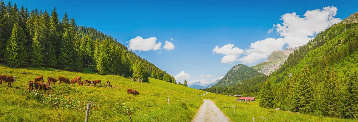 Vakantie in Haute-Savoie