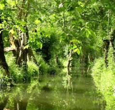 Le Marais Poitevin vakantie