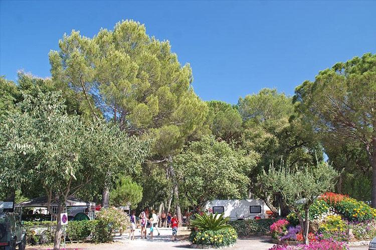 Camping Côte d'Azur